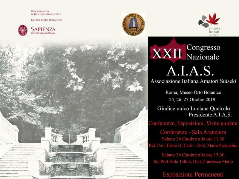 AIAS 2019 | Il Congresso