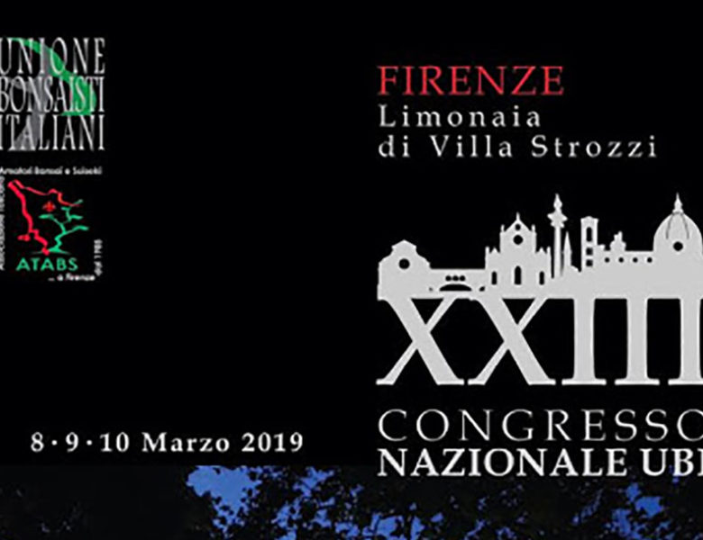 XXIII Congresso Nazionale UBI