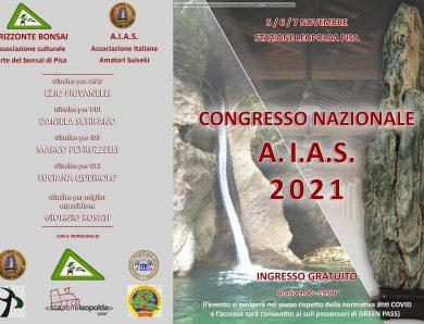 XXIV CONGRESSO AIAS | PISA – 5/7 Novembre 2021 – Programma ed info