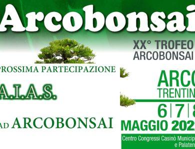 36° Arcobonsai